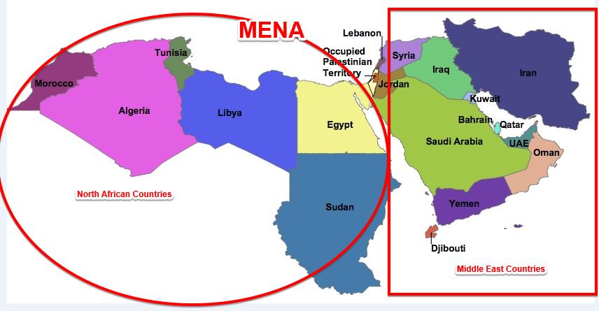 MENA PHARMACEUTICAL MARKET